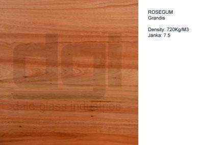 Rosegum